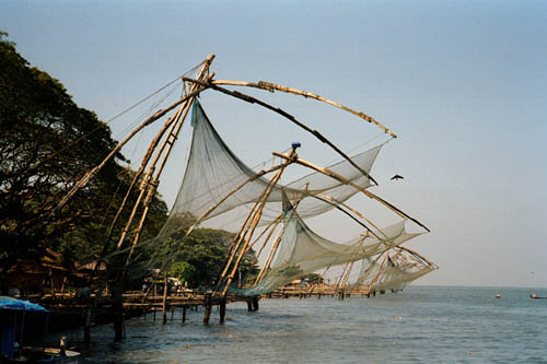 Cochin's famous fishing nets